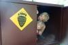 Kinder in der Bärenkiste