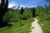 Wanderweg am Jennylake