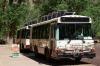 Schuttelbus
